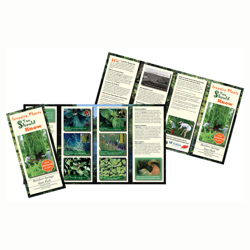 """Our tri fold, gatefold, bi fold brochures are printed full color cheap and fast with the highest qualities. Brochures are printed In Atlanta, New York, California, and MIami Florida Full Color cheap and fast. Visit the """"special deal"""" section on our site for free business card sepcial on cheap brochure printing done right."""