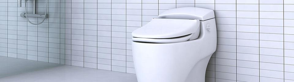 Bidet Reviews Bidet Seat Reviews Bidet Toilet Seat Reviews