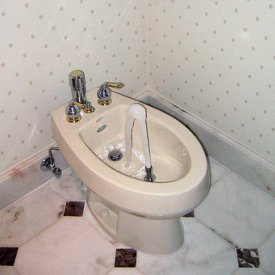 Outstanding Boday Toilets In Use Diagram Schematics Ibusinesslaw Wood Chair Design Ideas Ibusinesslaworg