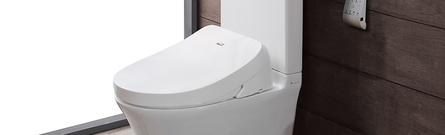 Japanese Toilet Seat Japanese Toilet Seats  Bidet