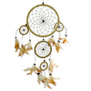 Dream Catcher Natural