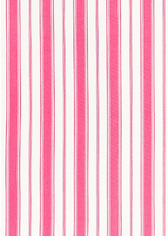 Branca Stripe in Fuchsia