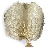 Redefine contemporary style with the Sea Fan Sconce from Regina Andrew Design. With an artist's eye, their assortment skillfully mixes modern with rustic, elegant with casual, romantic with relaxed. They have an eclectic vision that resonates with natural style.Brass 13.5 w  X 14.5 H X 5 D