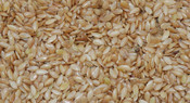 750 G Flax - Golden