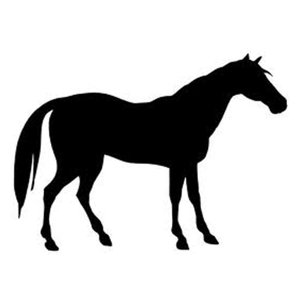 home-horse.png
