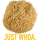 Ultra Soft & Really Really Big Sea Wool Bath Sponge