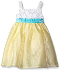 Rare Editions Girls  Lace To Organza Social Dress