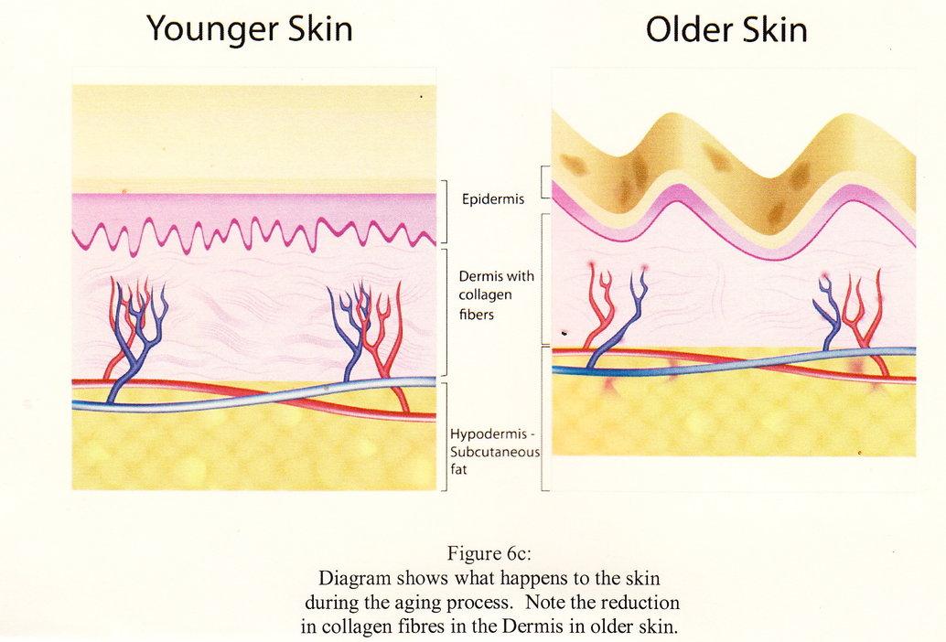 rsz-mature-skin-0001.jpg