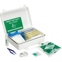 25 Person All Purposeose First Aid Kit