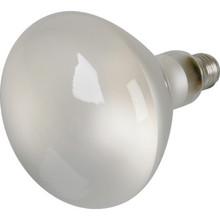 Reflector Bulb Value Light 300W Pool Clear 12V