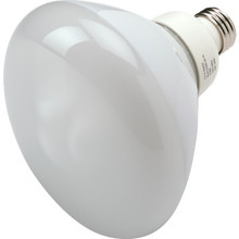 Integrated Compact Fluorescent Bulb TCP 16W 2700K R40