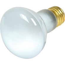 Reflector Bulb Value Light 100W Spa Clear