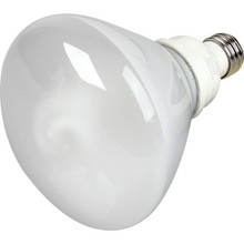 Integrated Compact Fluorescent Bulb TCP 19W 2700K R40