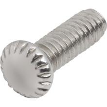 Nickel Light Fixture Screw Pack of 100