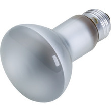 Reflector Bulb Philips 30W R20 Flood 12pk