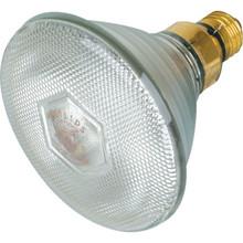 Halogen Bulb Philips 250W PAR38 FL