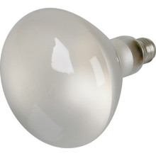Reflector Bulb Value Light 500W Pool Clear 130V