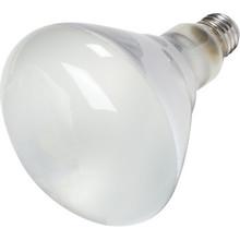 Reflector Bulb Philips 250W Heat Clear Coated