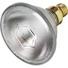 Metal Halide Bulb Philips 100W PAR38 FL25 Medium Base
