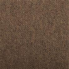 Shaw 24X24 Capital III Carpet Tile Color Election Pkg/12
