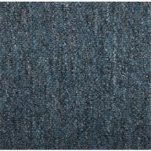 Shaw24X24 Capital III Carpet Tile Color Representative Pkg/12