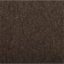 Shaw 24X24 Capital III Carpet Tile Color Eminence Pkg/12