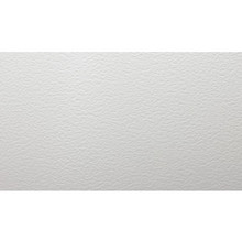 2x2' Tegular Ceiling Tile 12/Pkg