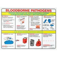 Brady Bloodborne Pathogens Poster