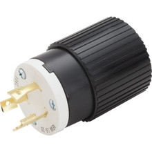 20 Amp Industrial Grade Grounded Locking Plug - 250 Volt