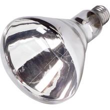 Reflector Bulb Philips 125W Heat Clear Coated