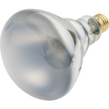 Halogen Bulb Value Light 65W BR40 Flood