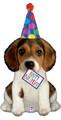 "41"" JUMBO HBD Puppy Dog"