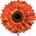"""23"""" Orange Flower"""
