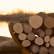 The Best Wood To Burn In A Wood Burning Fire Pit - Part 1