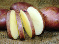 Organic Potato - Caribe