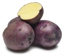Organic Potato - Huckleberry Gold