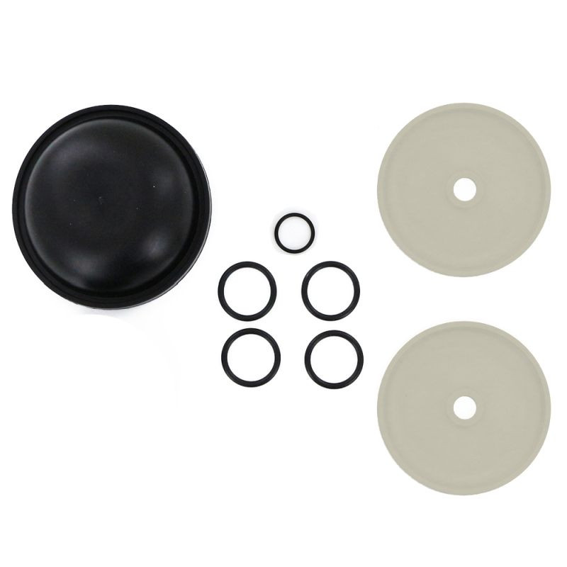 9910-KIT1723-O Rittenhouse Hypro D252 Diaphragm Repair Kit 9910-KIT1723 with Sight Glass O-Ring