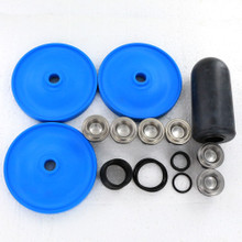 Complete BlueFlex repair kit for the Hypro D813 includes the BlueFlex diaphragms, as well as replacement valves and o-rings.