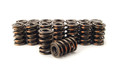 PAC 1225 Solid Roller Dual Valve Springs