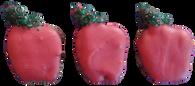Mini Apples (CASE OF 36 TREATS)