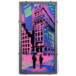 5th Avenue, New York City, NY