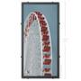 Navy Pier Ferris Wheel Silk Screen Print by Charlie Barton