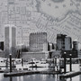 Baltimore map detail
