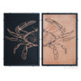 Crab Diptych by Charlie Barton