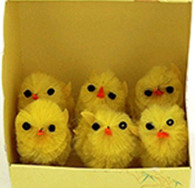 Easter Yellow Mini Chicks Pack | TNW Australia