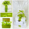 Healthy Gourmet Gifts gift presentation, two stacked white high gloss boxes dressed with lemongrass green grosgrain ribbon.