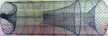 "20"" Diameter x 54"" Long 1 1/4"" Mesh - Wire Trap"