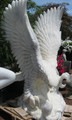 Marble eagle 1.2m tall