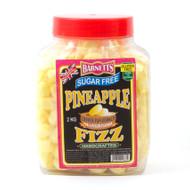Barnetts Sugar Free - Pineapple Fizz 2kg Jar