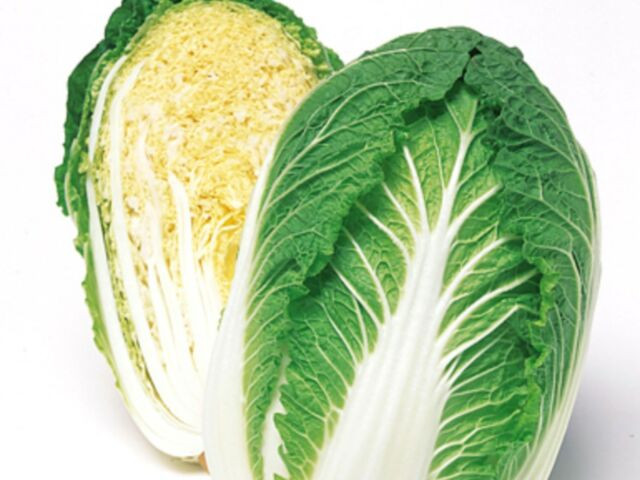 Wombok Cabbage Each My Fruito